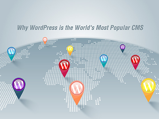 Why WordPress is the World's Most Popular CMS